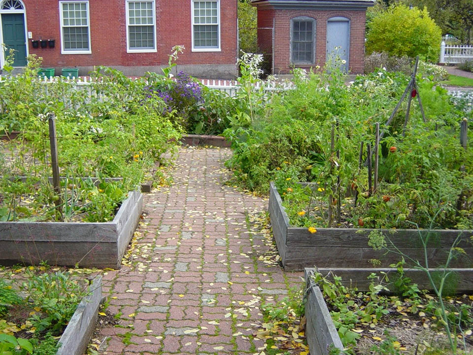The Community Garden at Strawbery Banke where members try out heirloom seeds.